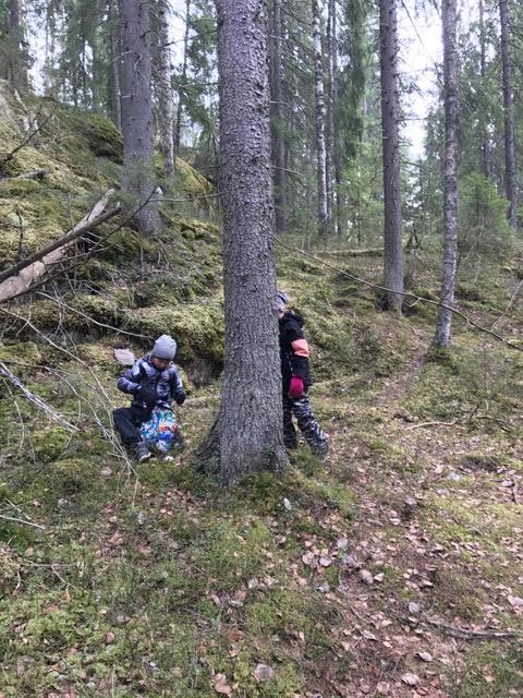 Nuuksion reitit lapsille metsassa