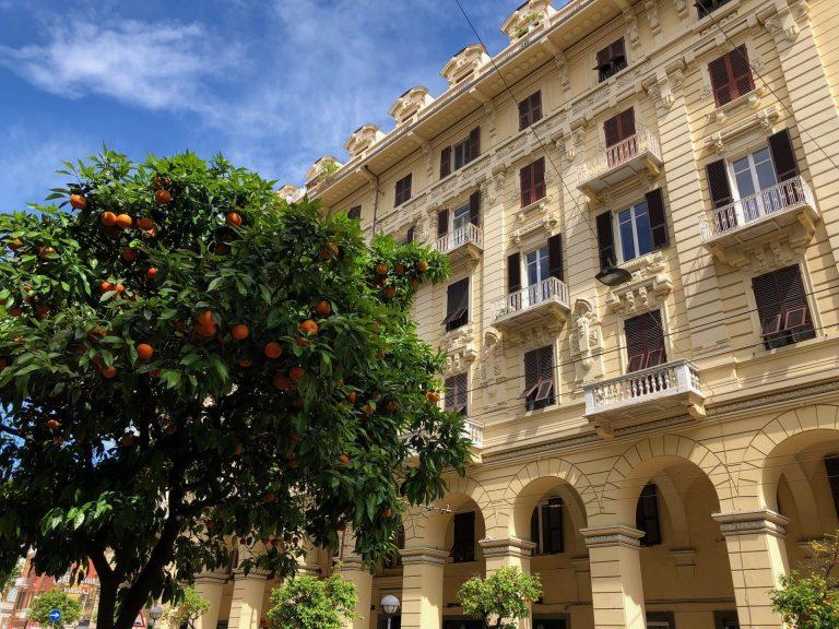 appelsiinipuita la speziassa