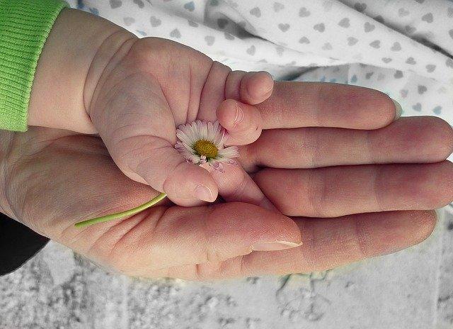 lapsen ja aikuisen käsi