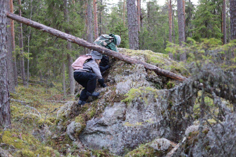 kiipeäminen kivelle metsässä