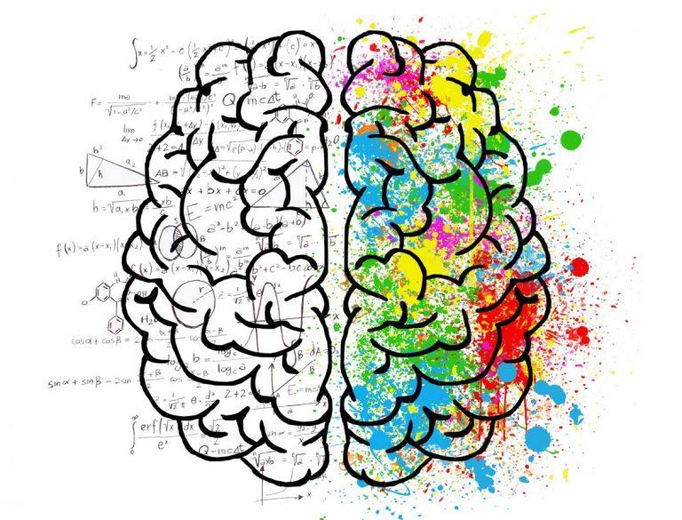 lapsen aivojen kehittyminen