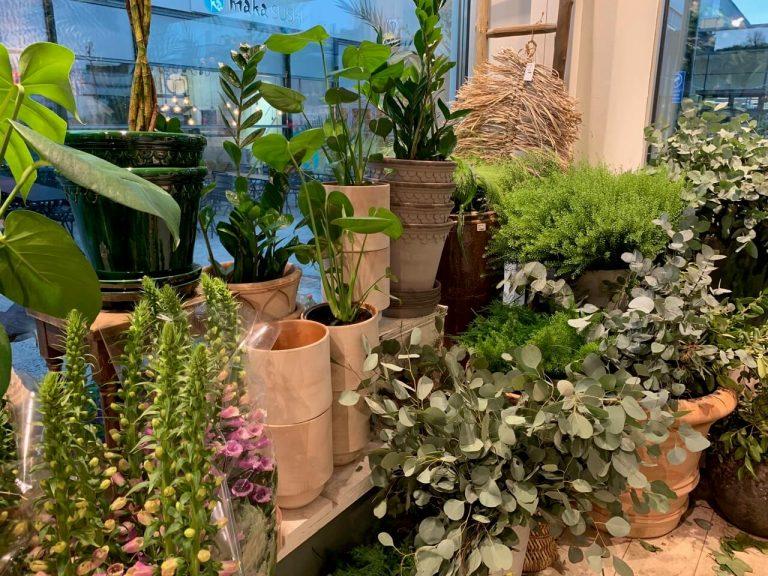 home in garden kauniainen